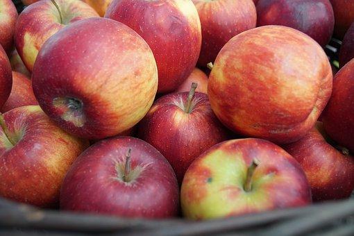 Five Foods that Strengthen Teeth